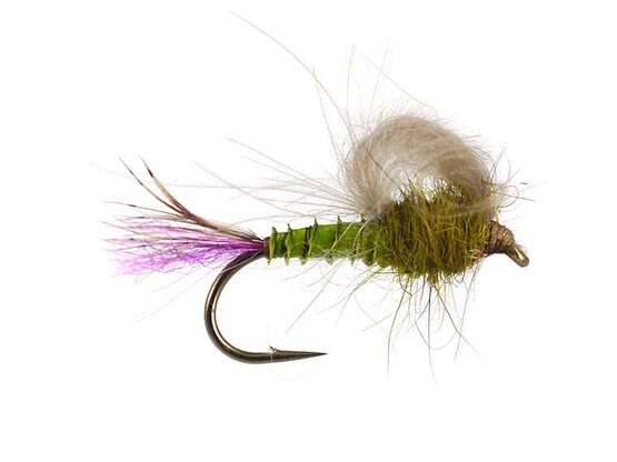 Olive Straight Loopwing Emerger - Medium Olive