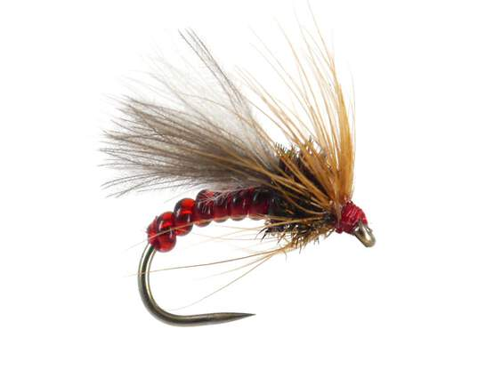 Red Grayling Dream BL