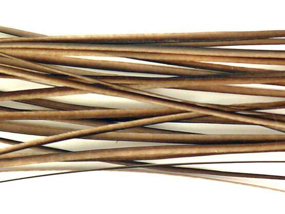 PEACOCK QUILLS HAND STRIPPED hotfly - 25 pc. - natural
