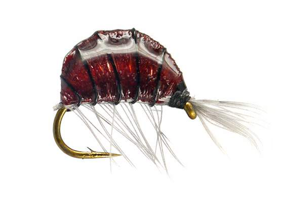 Heavy Epoxy Shrimp Dark12