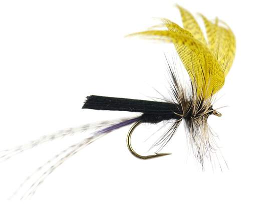 Black Yellow Mayfly