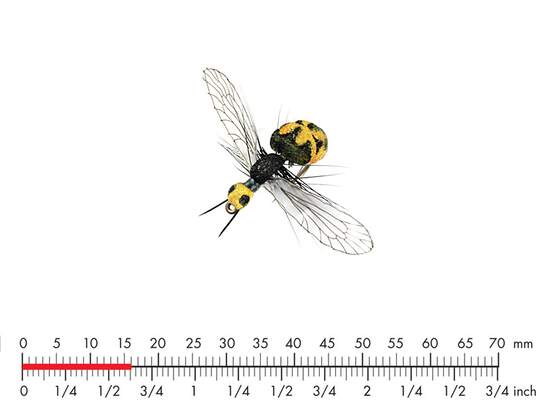 Wasp Black Yellow 15mm