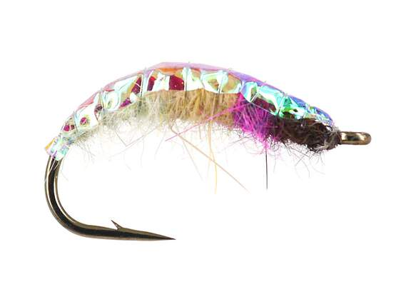 Rainbow Czech Nymph